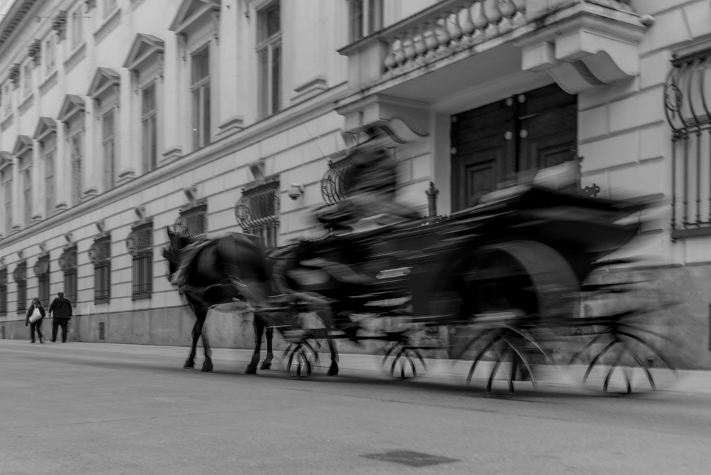 Vienna House Carriage