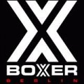 Boxer Berlin